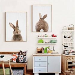 Affiche lapin brun mignon