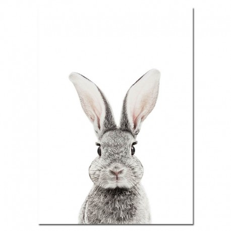 Affiche lapin gris